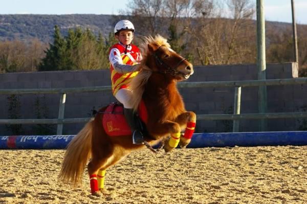Le Horseball de Saint Georges d'Orques haut en couleurs !